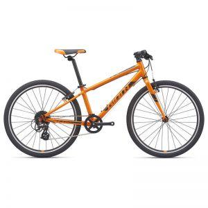 ARX 24 | Orange