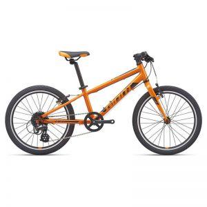 ARX 20 | Orange